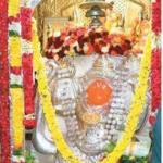 திருப்பதி ஜபாலி தீர்த்தத்தில் ஏகாந்த சேவை!