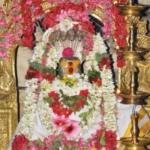 கார்த்திகை மாதப் பிறப்பில்... கார்த்திகை மாத சிறப்புகளை தெரிந்து கொள்வோம் #karthikaispecial