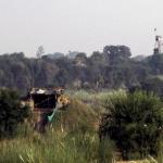 இந்திய ராணுவத்தினர் 11 பேர் சுட்டுக்கொலை?