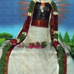 1008 இளநீர் அபிஷேகத்துடன் சனி மகா பிரதோஷ வழிபாடு!