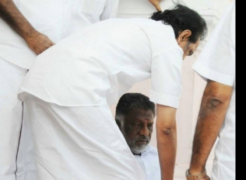 MK Stalin requests O.Paneerselvam to give importance for certain things