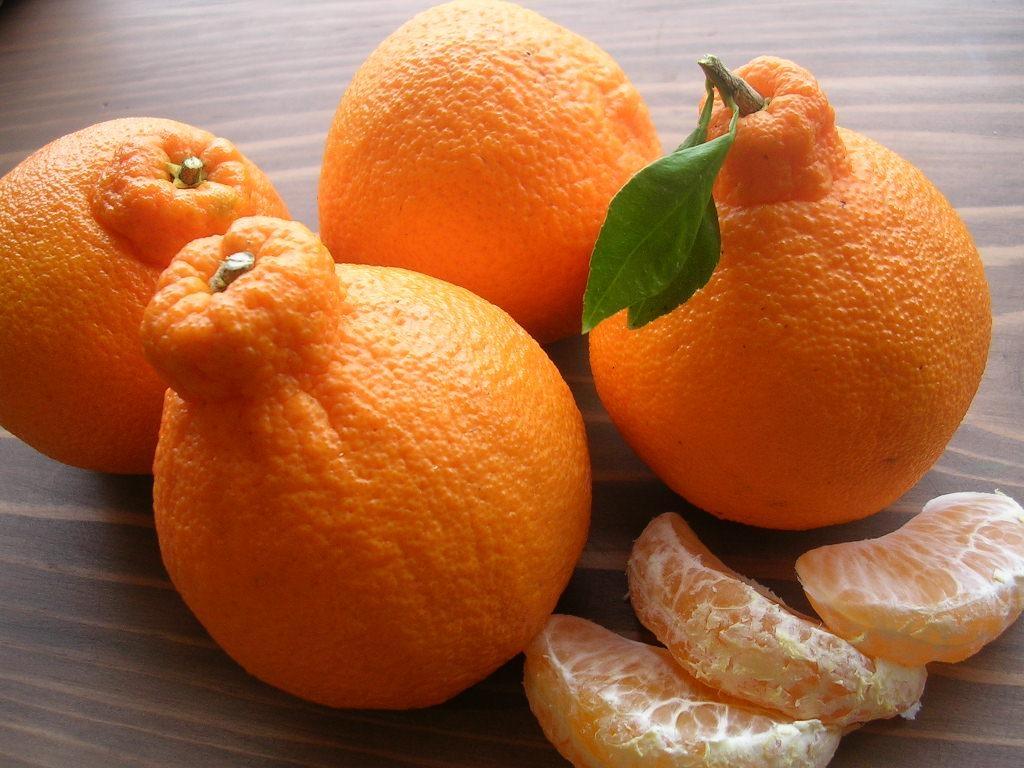 டெகொபான் சிட்ரஸ் பழங்கள், Dekopon citrus