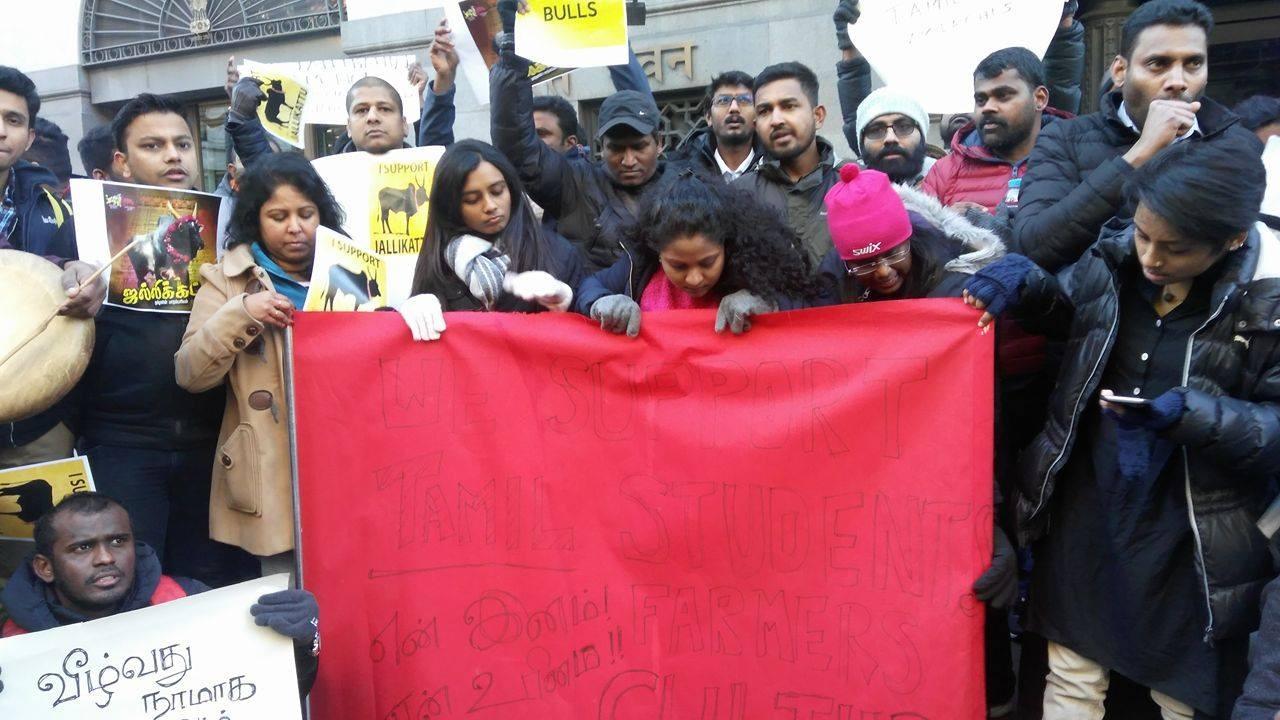 Jallikattu protest in London