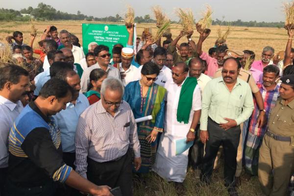 Central crew investigates Cuddalore drought