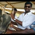 #Breaking பிரதமருக்கு நடிகர் விஷால் திடீர் கடிதம்!