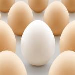ஹாஃப்பாயில் சாப்பிடலாமா? முட்டை பற்றிய 7 உண்மைகள் #EggFacts