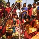 நன்றி செலுத்தும் நன்னாள்! தைப் பொங்கல் திருநாள்... #PongalSpecial