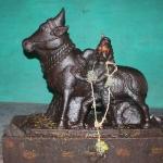 ஜல்லிக்கட்டு மாடுபிடிவீரருக்கு ஒரு கோயில்! இது மதுரை மண்ணின் பாசம்! #Jallikattu