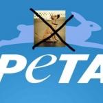 நாட்டு நாய்களை தடை செய்வதில் கவனம் செலுத்தும் பீட்டா..! #PETA