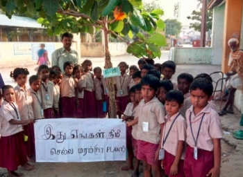 Karur Government School Planted Hundreds of tree saplings