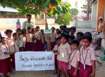 Karur Government School Planted Hundreds of tree saplings