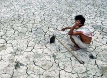 High Court issued notice to TamilNadu government regarding Farmers suicide