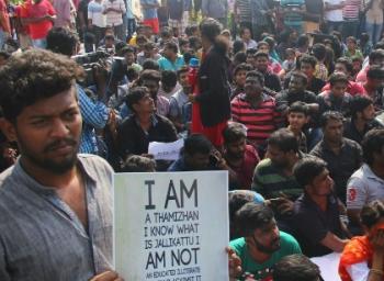 #Jallilkattu சென்னை போராட்டம்! விடிய விடிய போராட்டம் தொடரும் என அறிவிப்பு!  #LiveUpdates