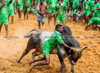 Vetrimaaran to make film on jallikkattu based novel vaadivaasal by si.su.chellappa. #BookReview