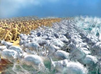 ஜல்லிக்கட்டு : மெரினாவில் நிகழ்த்தப்பட்ட காட்சிகளும், அதன் பின்கதையும்!
