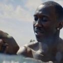 89வது ஆஸ்கர் விருது ரேஸில் இருக்கும் குதிரைகள் எவையெவை?! #Oscars2017