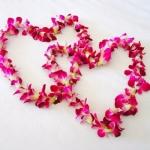 சிங்கிள் செல்லங்கள் காதலர் தினத்தை இப்படியெல்லாம் கொண்டாடலாம்! #ValentinesDay