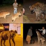 உலக அழிவுக்கு சிக்னல்கொடுக்கும் ஆப்பிரிக்க 'ஹைனா'க்கள்!