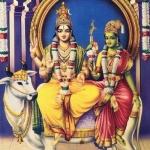 சிவ வழிபாடு... எந்த ராசிக்காரர்கள் எப்படி வழிபடவேண்டும்?