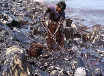 கப்பலில் இருந்த மொத்த சரக்கு 55,000 டன்... கடலில் கொட்டியது எவ்வளவு? #ChennaiOilSpill