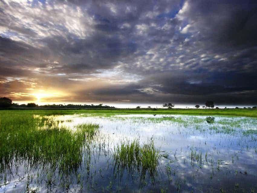 ஒரினோகோ ஆறு: