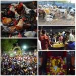 முனியாண்டவர் கோயிலில் பிரியாணி பிரசாதம்!