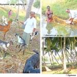 50 சென்ட் நிலத்தில் 2 லட்ச ரூபாய் லாபம்...விருது வாங்கிய விவசாயி..!