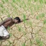 தமிழக வறட்சி நிவாரணத்துக்கு 2,096  கோடி ரூபாய் பரிந்துரை!