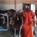 இறைச்சிக்கூடங்கள் மூடல்! பாபா ராம்தேவ் அதிரடி கருத்து