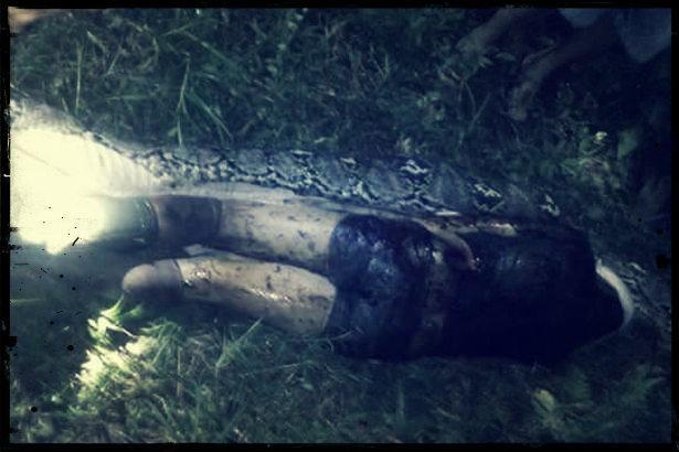 இந்தோனேசியாவில் மலைப் பாம்பு விழுங்கிய அக்பர்