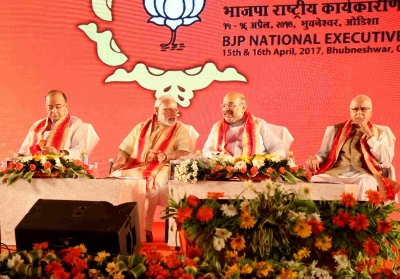 Bjp National executive meeting
