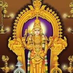 அசுவினி நட்சத்திரக்காரர்கள், பின்பற்ற வேண்டிய ஜோதிட- ஆன்மிக ரீதியான நடைமுறைகள், பரிகாரங்கள்!
