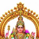 பூசம் நட்சத்திரக்காரர்கள் பின்பற்ற வேண்டிய ஜோதிட ஆன்மிக நடைமுறைகள், பரிகாரங்கள்!  #Astrology