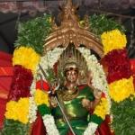 பிரிந்த கணவன் மனைவியை சேர்த்து வைக்கும் வெட்டுடையார் காளியம்மன்!