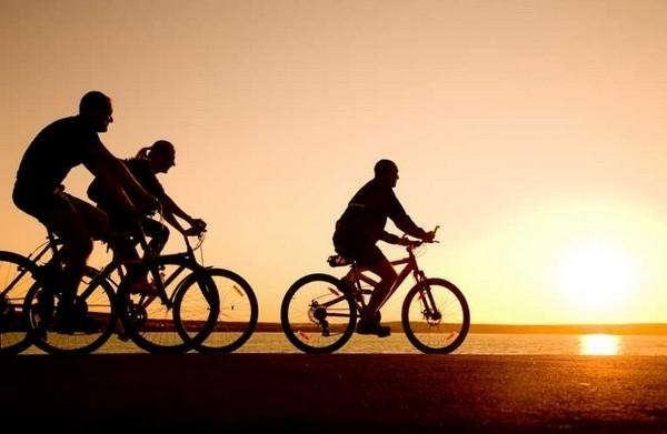 cycling make to reduce fat
