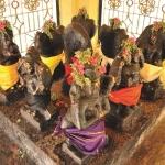 சூரியன் முதல் கேது வரை... கிரகங்களுக்கு வலிமை சேர்க்கும் பரிகாரங்கள்!