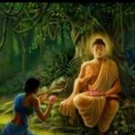 புத்தர் ஞானம் அடைந்த பிறகும் மனைவியை ஏன் சந்தித்தார்?#BudhdhaPoornimaSpecial