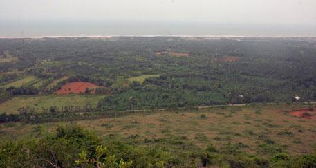 கொவ்வாடா