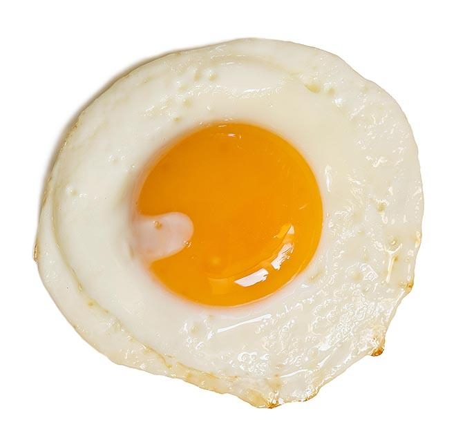 food - egg