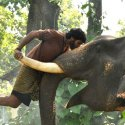 'கும்கி 2' படத்தில் எல்லாமே புதுசுதான்- பிரபுசாலமன்