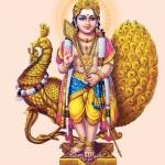 வேண்டுவன எல்லாம் அருள்வான் வேல்முருகன் - வைகாசி விசாகத் திருநாள் பகிர்வு