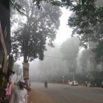 உலக நாடுகள் செய்ய நினைப்பதை செய்து முடித்த கேரள கிராமம்..! #CarbonNeutrality