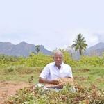50 Cent... 120 days... ₹27,000! - Assured return from Nilakadalai Cultivation