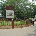 பொறியியல் படிப்புக்கான கவுன்சலிங்: இன்று ரேண்டம் எண் வெளியீடு