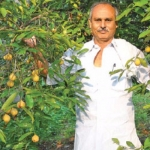 ₹10 Lakhs profit from 10 acres...Substantial Returns from Coconut, Betel nut and Nutmeg!