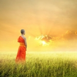 10 Intriguing Reflections about the Mind and its Nature