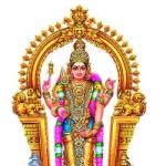 திருமணத் தடை ஏற்படுத்தும் செவ்வாய் தோஷம்... பரிகாரங்கள்! #Astrology