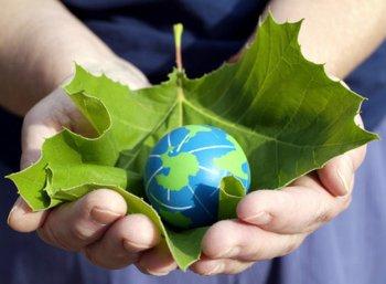 நாம் வெட்டும் ஒரு மரம் என்பது ஒரு மரம் மட்டும் தானா? #WorldEnvironmentDay