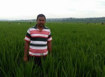 ஆப்பிரிக்காவில்  இந்திய இளைஞரின் 300 ஏக்கர்  நெல் விவசாயம்!