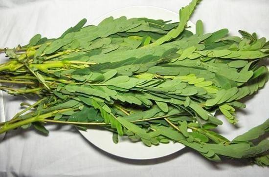 agathi greens